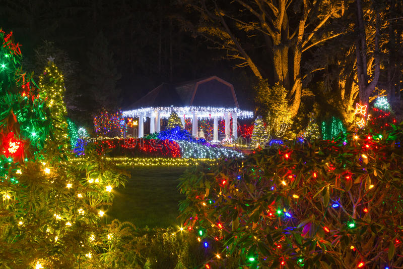 Luces de la Navidad en el parque de estado de los acres de la orilla, Oregon fotos de archivo