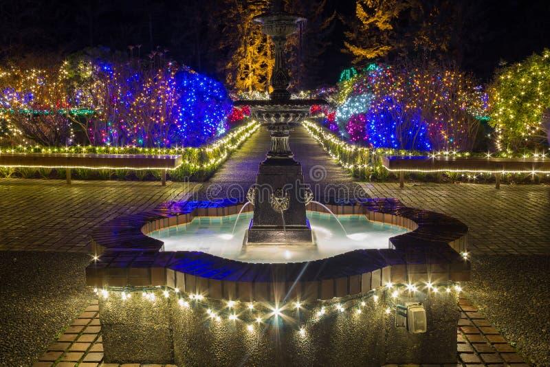 Luces de la Navidad en el parque de estado de los acres de la orilla, Oregon imagen de archivo