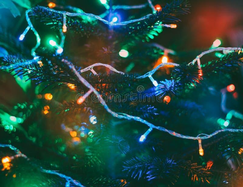Luces de la Navidad multicoloras en árbol del Año Nuevo fotografía de archivo libre de regalías