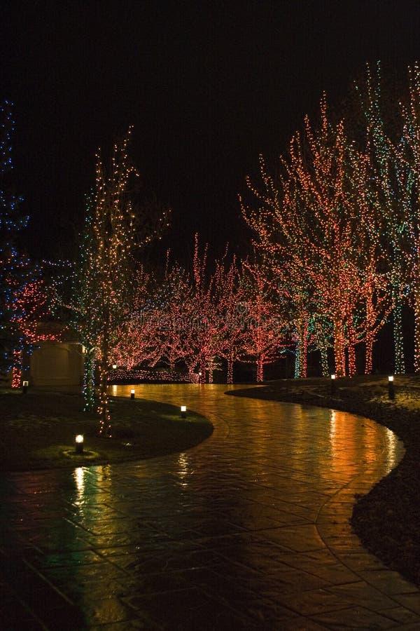 Luces de la Navidad que iluminan la calzada imagen de archivo