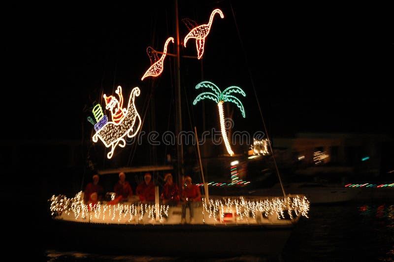 Luces de la Navidad tropicales imágenes de archivo libres de regalías