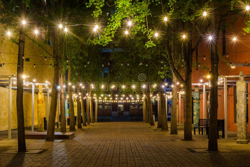 Luces de la secuencia en la plaza del siglo en la noche, en Roanoke c?ntrico, Virginia fotografía de archivo