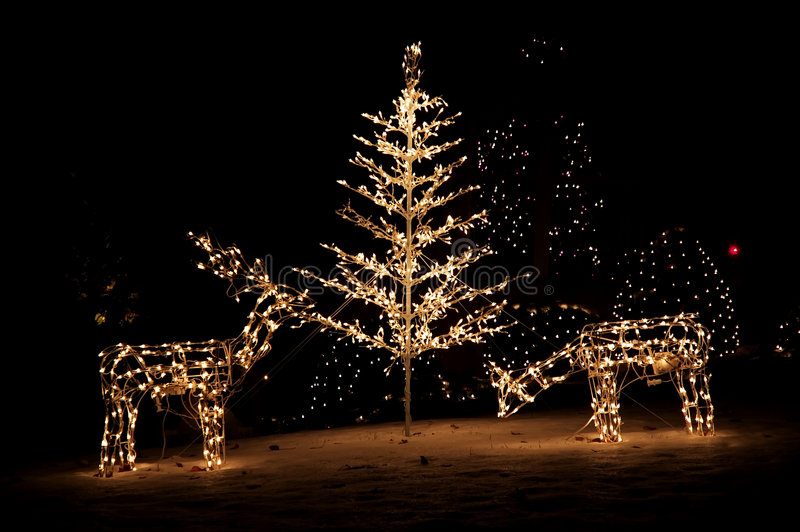 Luces de la yarda de la Navidad foto de archivo