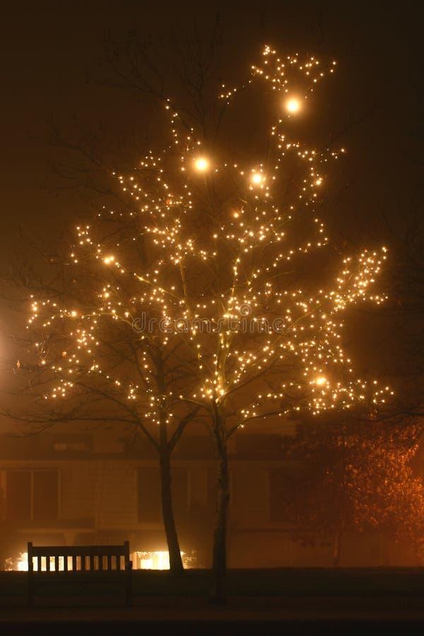 Luces del día de fiesta en la niebla fotografía de archivo