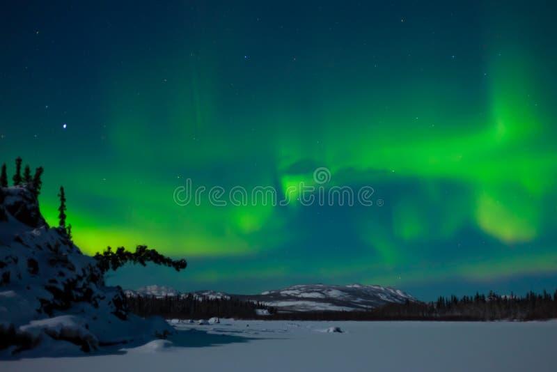 Luces norteñas (borealis de la aurora) imagen de archivo