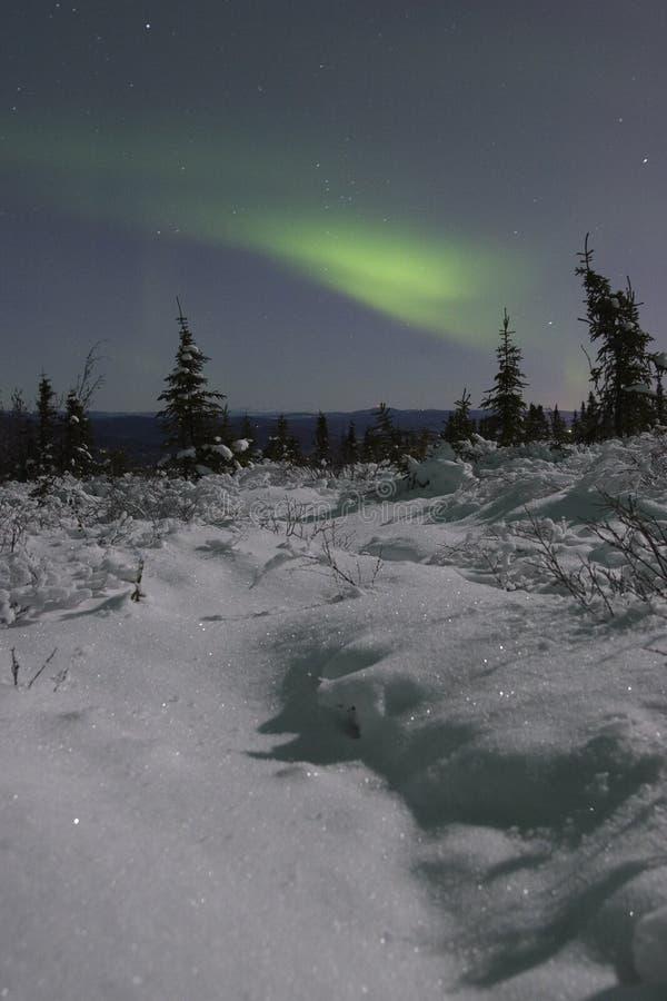 Luces norteñas sobre paisaje del claro de luna fotografía de archivo libre de regalías