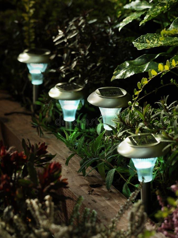 Luces solares del jardín foto de archivo