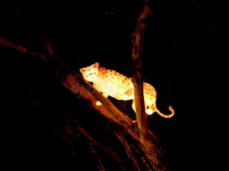 Luces y festival hermosos del safari de las linternas en Singapur foto de archivo