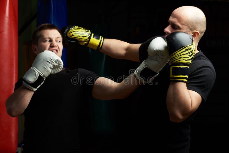 Lucha del entrenamiento del boxeo fotos de archivo