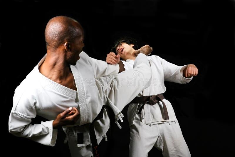 Lucha del karate imágenes de archivo libres de regalías