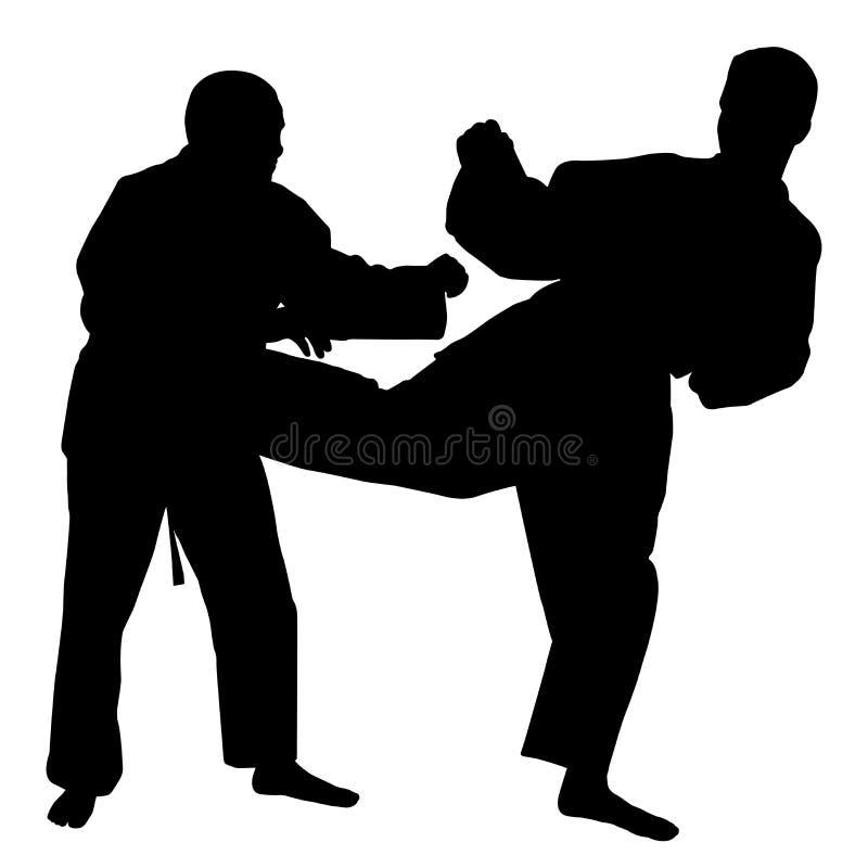 Lucha del karate stock de ilustración