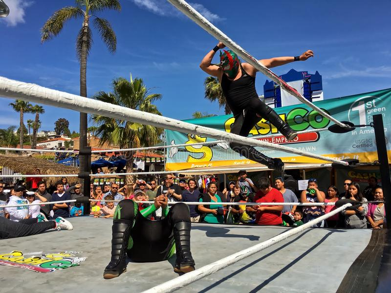 Lucha Libre墨西哥搏斗 免版税库存照片