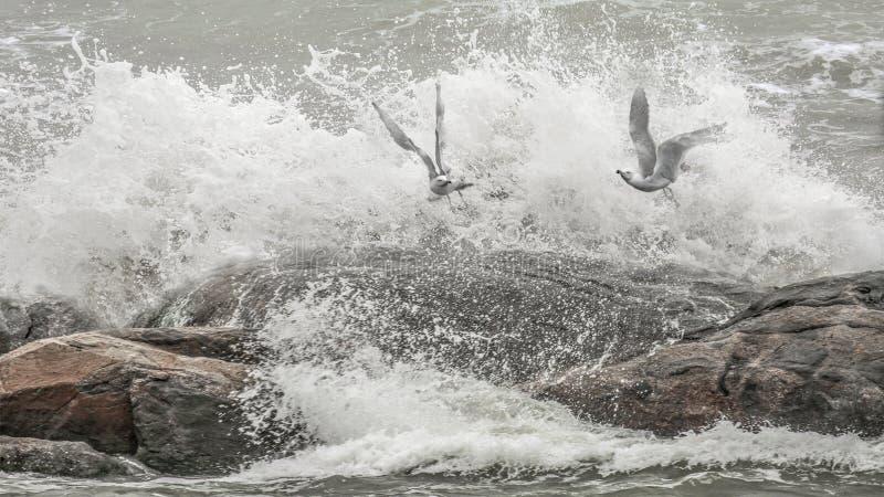 Luche el viento y las ondas imagen de archivo libre de regalías