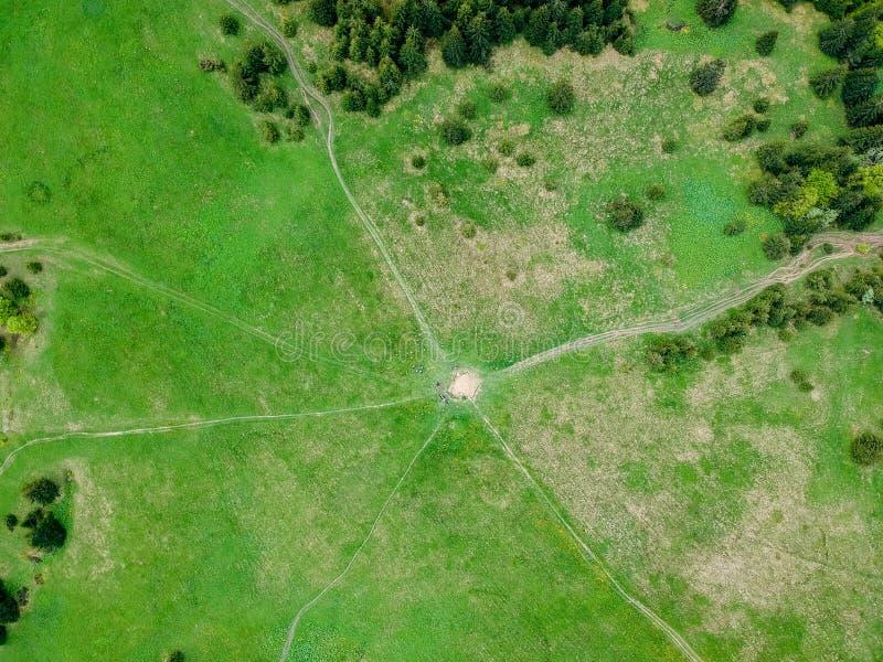 Lucht bosmening in de zomertijd met goed weer stock foto