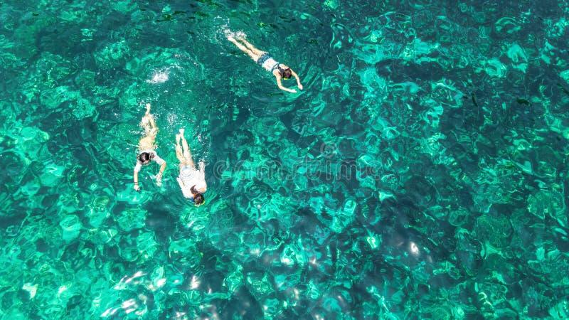 Lucht hoogste mening van familie hierboven snorkelen van, moeder en jonge geitjessnorkelers die in een duidelijk tropisch zeewate royalty-vrije stock afbeeldingen