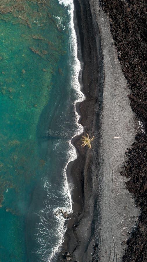 Lucht luchtdieverticaal van de kustlijn van het overzees met verbazende golven en een palm wordt geschoten royalty-vrije stock fotografie
