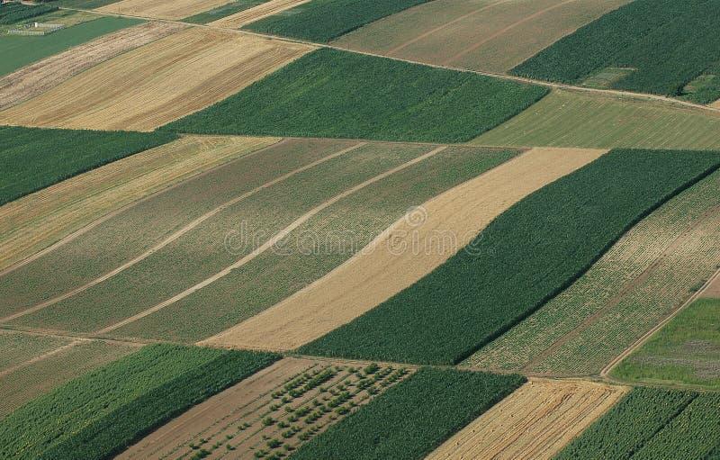 Lucht mening van groene gebieden royalty-vrije stock fotografie