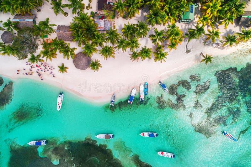 Lucht mening van tropisch strand Saonaeiland, Dominicaanse Republiek Exotisch Landschap stock afbeeldingen