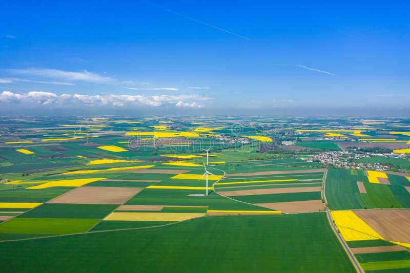 Lucht mening van windturbine Raapzaad het bloeien Windmolens en gele gebieden van hierboven Landbouwgebieden op een de zomerdag royalty-vrije stock afbeelding