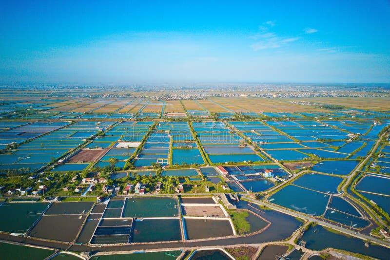 Luchtbeeld van de grote landbouwbedrijven van het garnalenfokken in Giao Thuy, Vietnam stock foto
