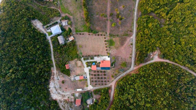 Luchtdaling onderaan mening van de huizen van het olijflandbouwbedrijf met zwembad stock afbeeldingen