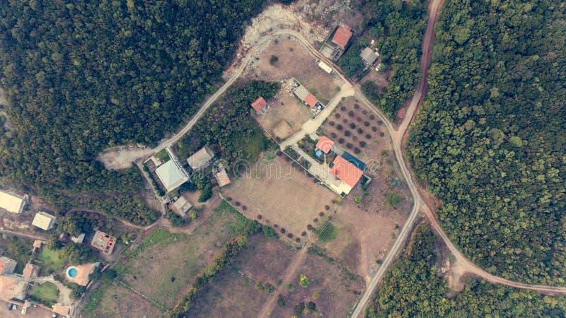 Luchtdaling onderaan mening van de huizen van het olijflandbouwbedrijf met zwembad royalty-vrije stock foto