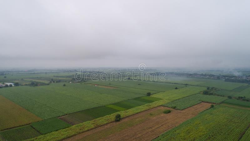 Luchtfoto Groen Gebied in de ochtendmist stock foto's