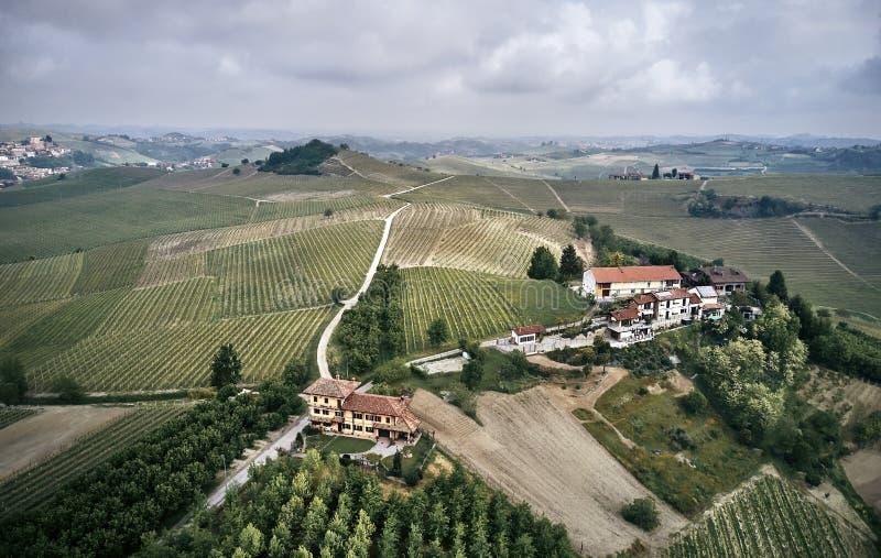 Luchtfoto van Piemonte-wijngaarden stock fotografie