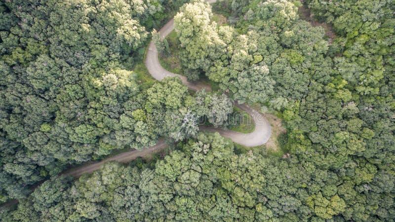 Luchthommelbeeld van een twisty weg in Korfu Griekenland royalty-vrije stock foto