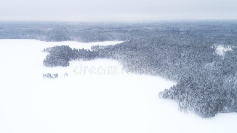 Luchthommelmening van een de winterlandschap Sneeuw behandelde bos en meren vanaf de bovenkant Lucht Photography royalty-vrije stock foto's