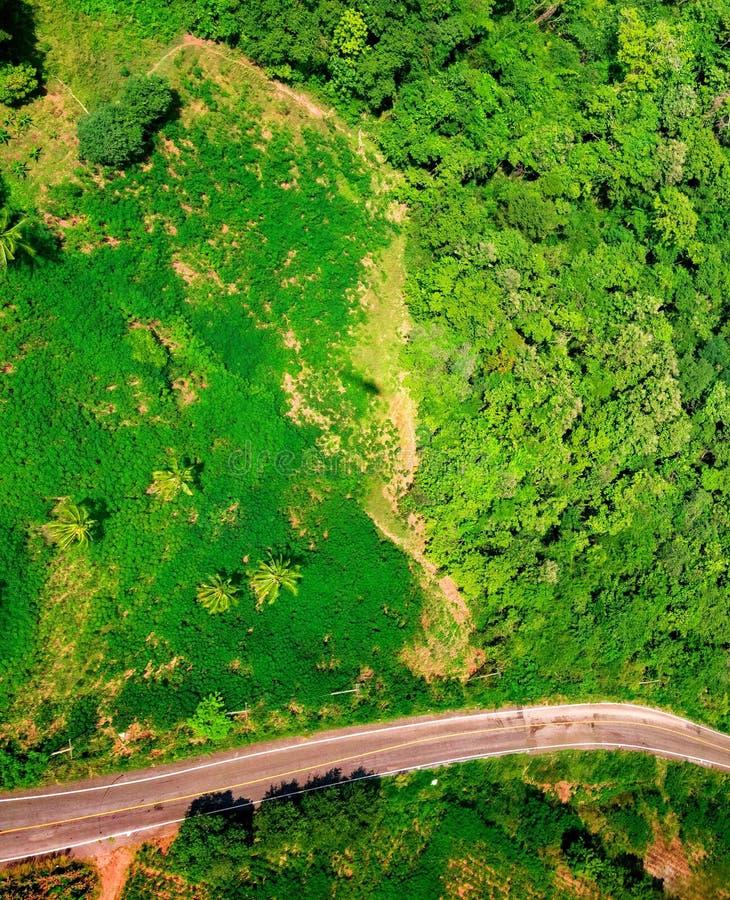 Luchtmening over bergweg die door bos gaan stock fotografie