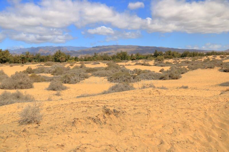 Luchtmening van de Maspalomas-duinen op het eiland van Gran Canaria royalty-vrije stock foto's