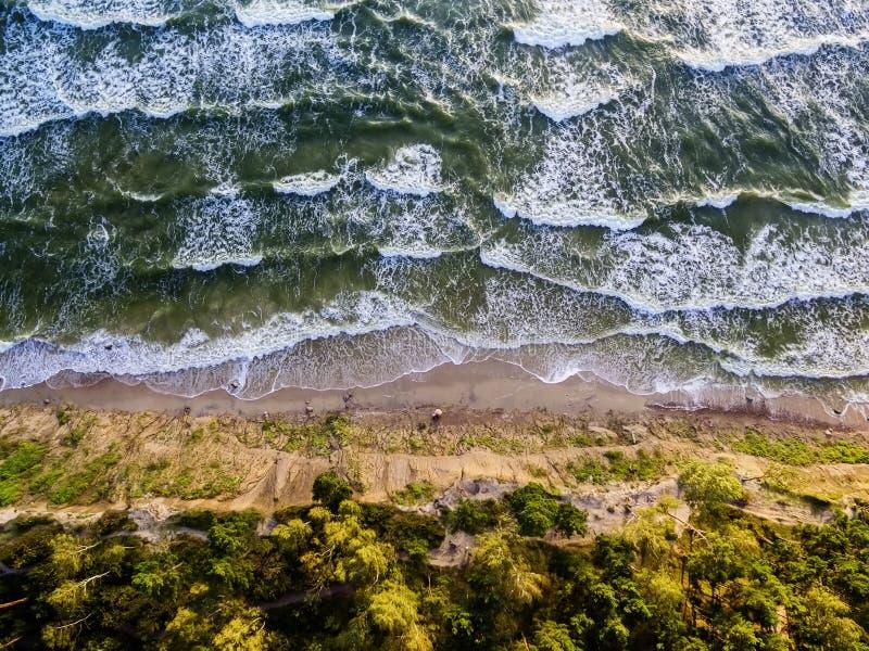 Luchtmening van de Oostzeekust in Litouwen royalty-vrije stock fotografie