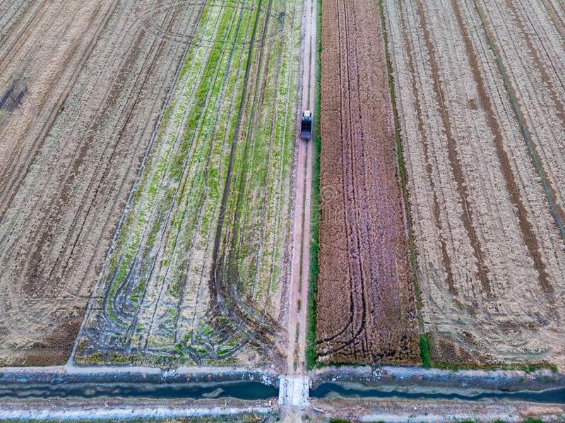 Luchtmening van de padievelden stock fotografie