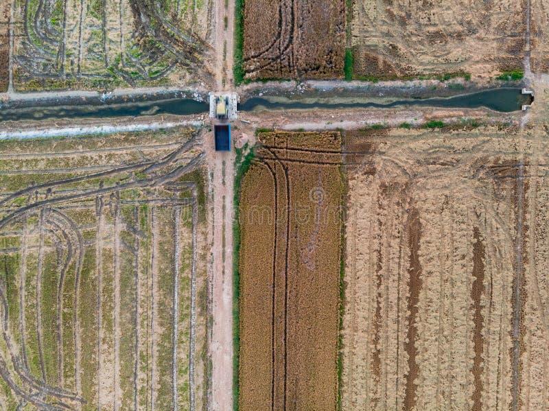 Luchtmening van de padievelden stock foto