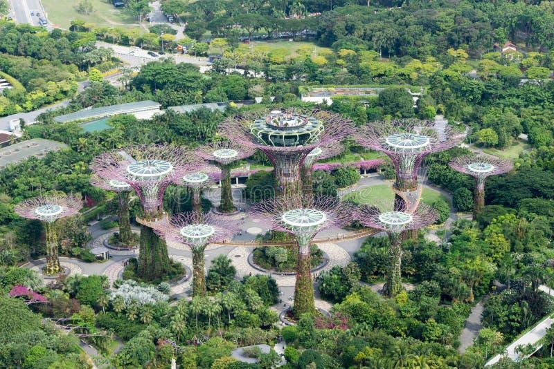 Luchtmening van de tuinen van Singapore door de baai stock fotografie