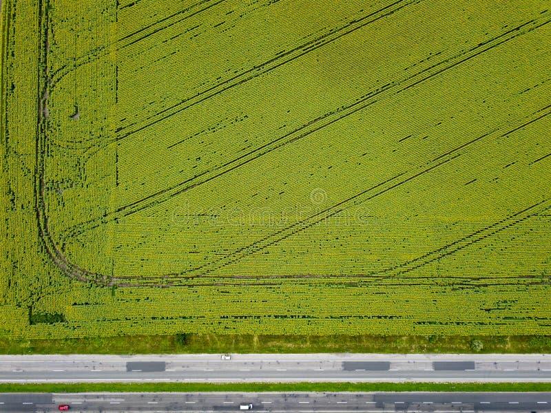 Luchtmening van een hommel op een landbouwgebied met een landelijke weg langs het gebied en auto's op het De mening is strikt royalty-vrije stock afbeelding