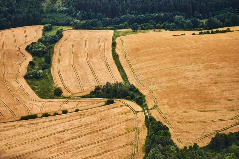 Luchtmening van een landschap met gele tarwegebieden en groene struiken royalty-vrije stock foto