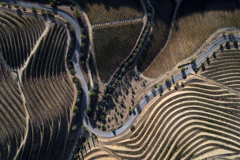 Luchtmening van een windende weg langs de wijngaarden in de heuvels van de dourovallei stock fotografie
