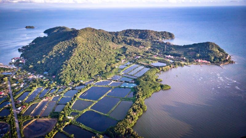 Luchtmening van garnalenlandbouwbedrijf en luchtzuiveringsinstallatie in Thailand Continu royalty-vrije stock foto's