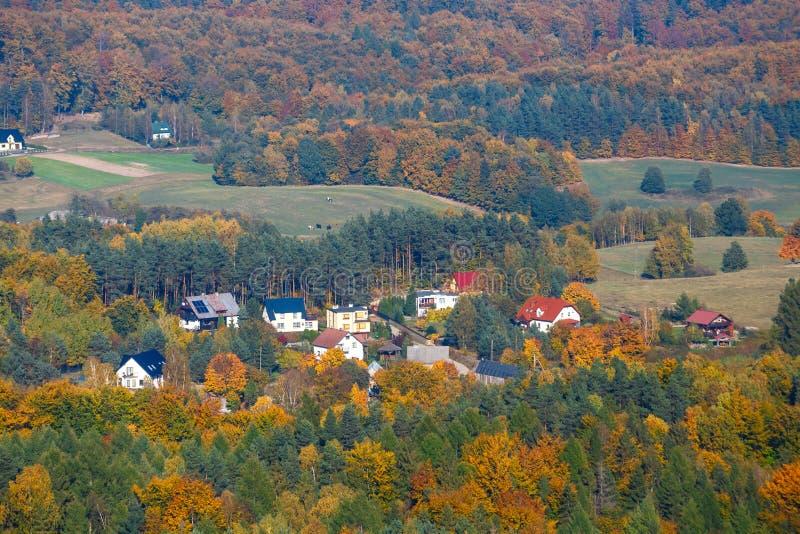 Luchtmening van het de herfstbos stock afbeelding