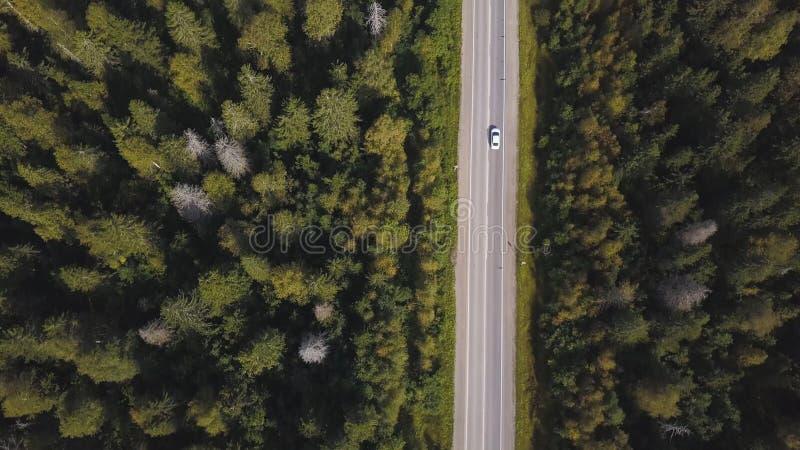 Luchtmening van hierboven van landweg door het groene de zomerbos in de zomer schot Auto het drijven Hoge hoekmening van royalty-vrije stock fotografie