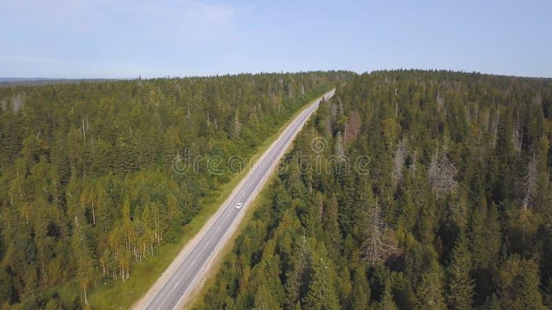 Luchtmening van hierboven van landweg door het groene de zomerbos in de zomer schot Auto het drijven Hoge hoekmening van stock fotografie