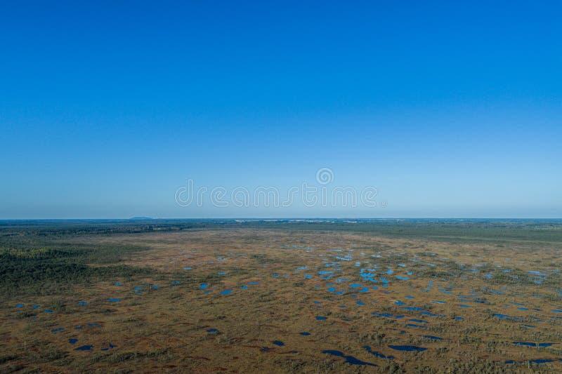 Luchtmening van Mooie meren in moerasland royalty-vrije stock afbeeldingen