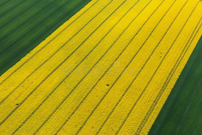 Luchtmening van oogstgebieden stock fotografie