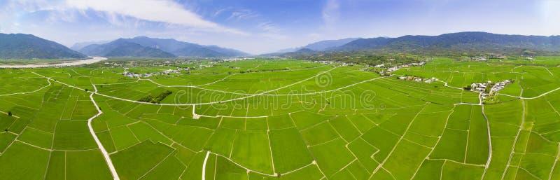 Luchtmening van Padievelden Chishang stock foto's