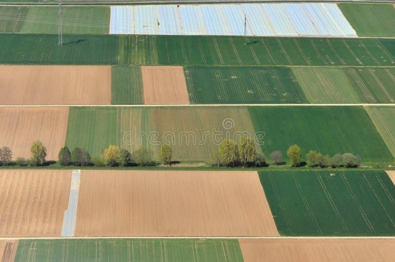 Luchtmening van rechthoekige landbouwgebieden stock afbeeldingen