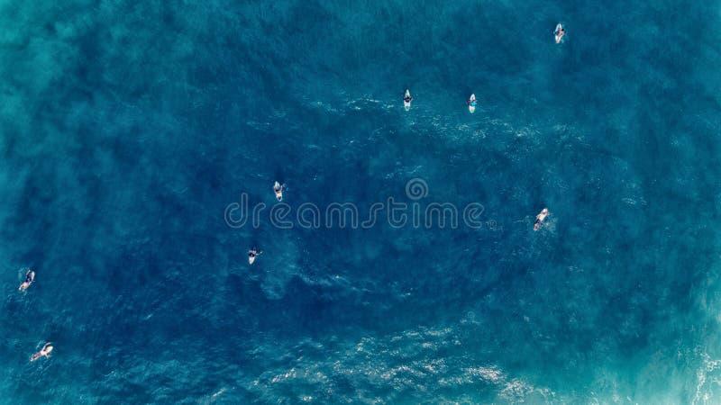 Luchtmening van Surfer die aan boord van dichtbij reusachtige blauwe oceaan zwemmen wav royalty-vrije stock fotografie