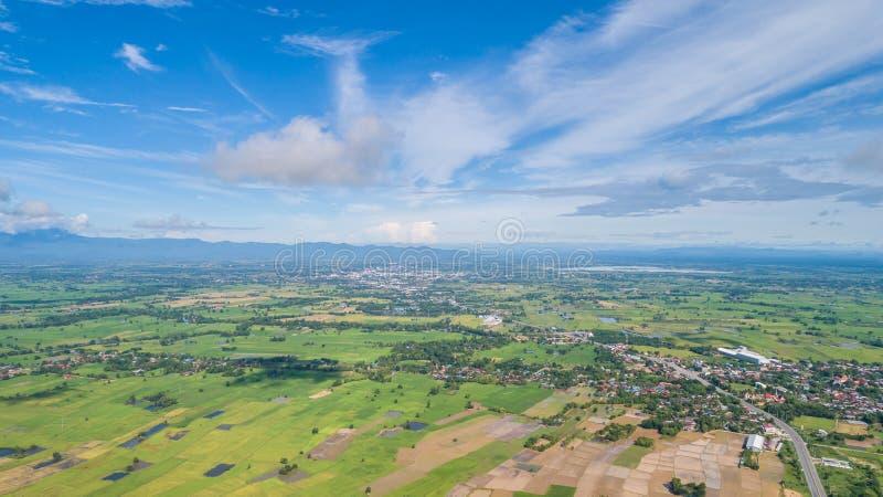 Luchtmening van Vliegende Hommel Mooi groen gebied van jonge ric royalty-vrije stock foto's