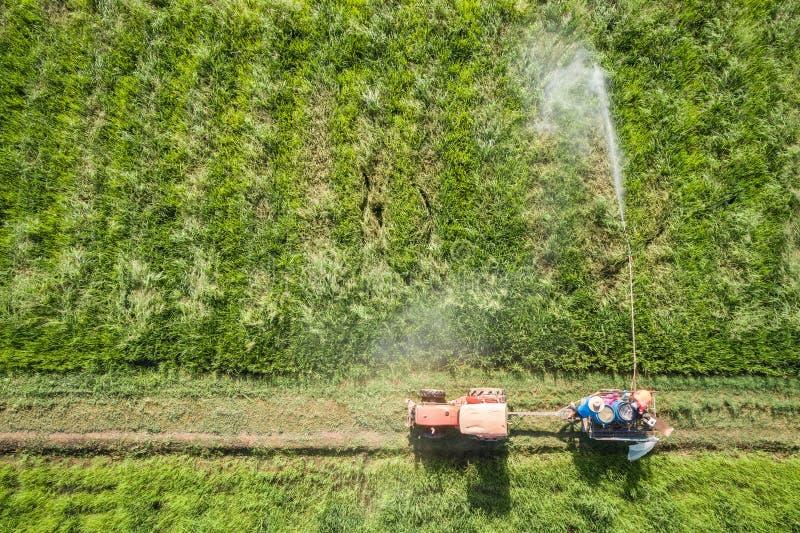 Luchtmening van Vliegende Hommel Thais landbouwers bespuitend chemisch product aan stock afbeelding